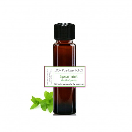 Pure Spearmint Essential Oil [ Mentha spicata ] 10 ml